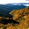 Sardinia Focus blogg