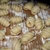 Vad äter man på Sardinien?