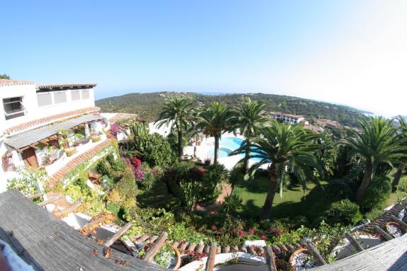 Utsikt över poolen och trädgården